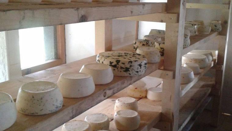 Dichiarazione annuale vendite dirette latte e prodotti caseari