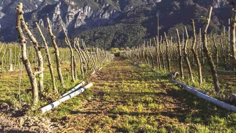 La gestione dei materiali esausti in agricoltura