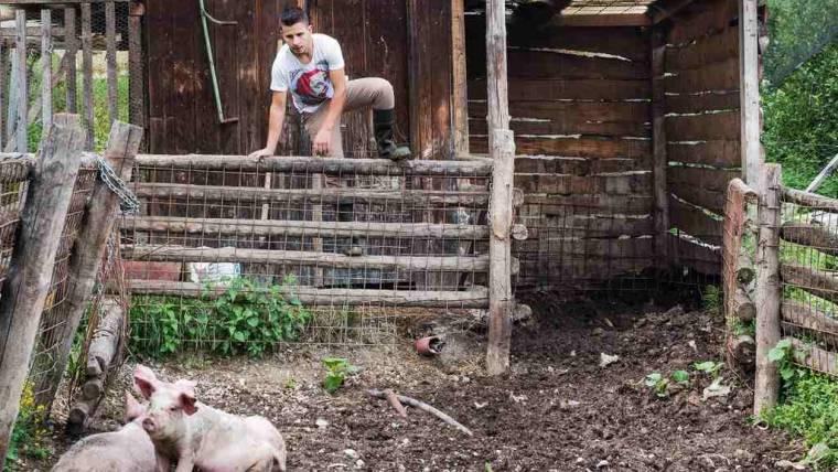 """Corso """"Il suino e il bovino nell'offerta gastronomica del Trentino Orientale""""   iscrizioni entro 16/09"""
