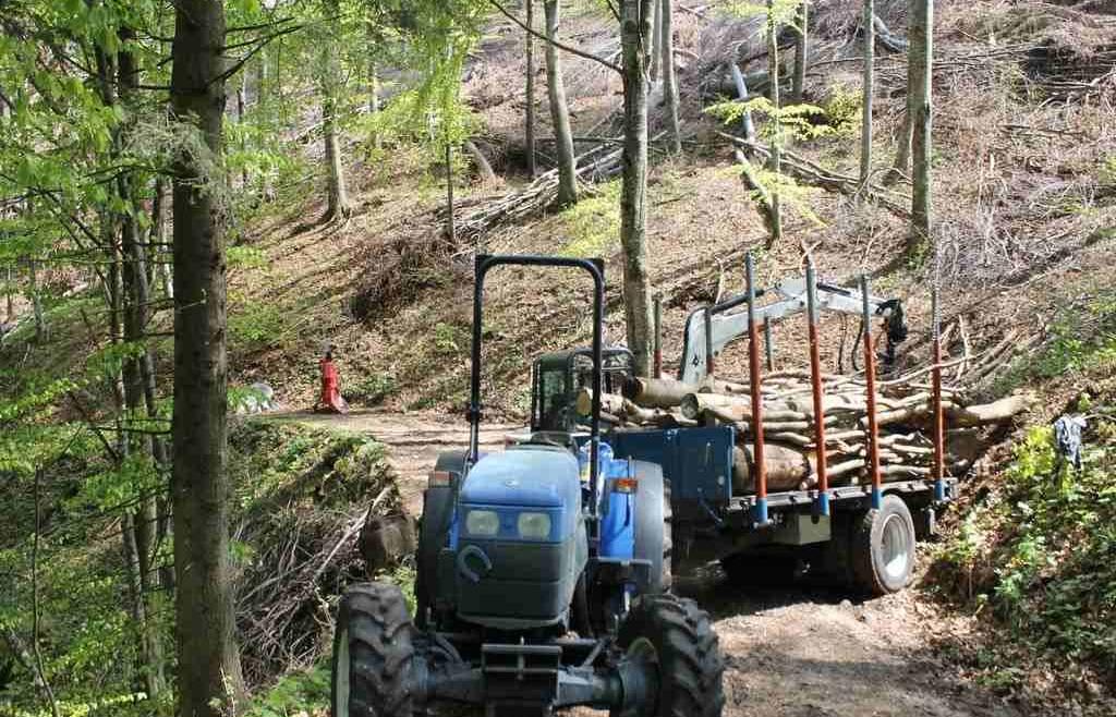 PSR forestale Mis 8.6.1 Contributi per l'acquisto di mezzi ed attrezzature forestali