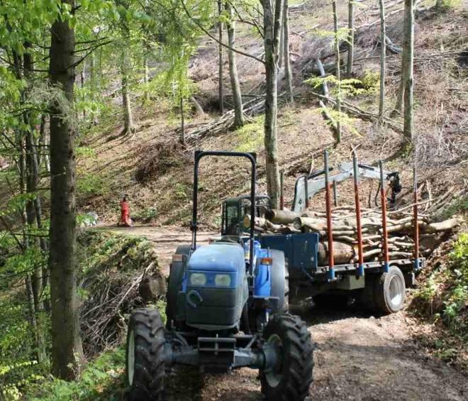 PSR: misure forestali