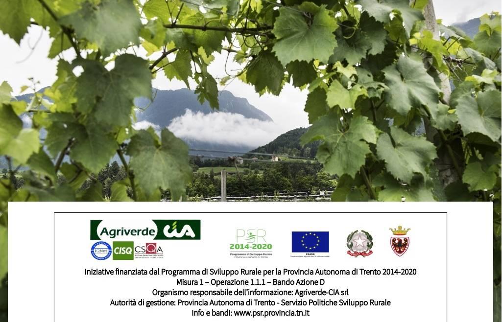Patentino fitosanitari – corsi per il Rinnovo | iscrizioni entro 26/06