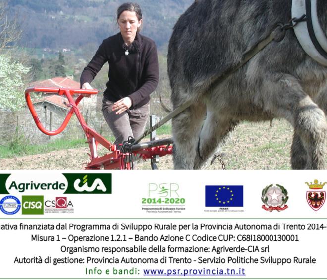 corso utilizzo degli animali da lavoro nell'agricoltura di montagna