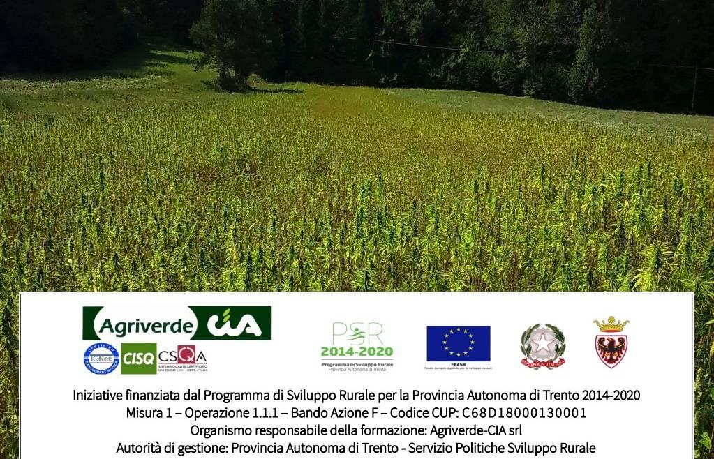 workshop Canapicoltura Trentina | iscrizioni entro 20/10