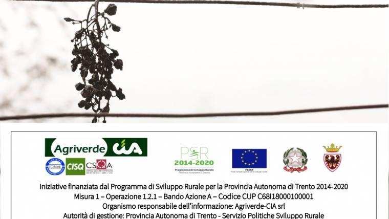 Incontri Inquadramento IVA operazioni agricole alla luce della fatturazione elettronica  | iscrizioni entro 20/12