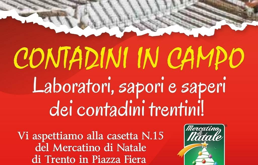 """Siamo """"in campo"""" al mercatino di Natale di Trento"""