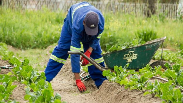 Formazione in materia di sicurezza per lavoratori