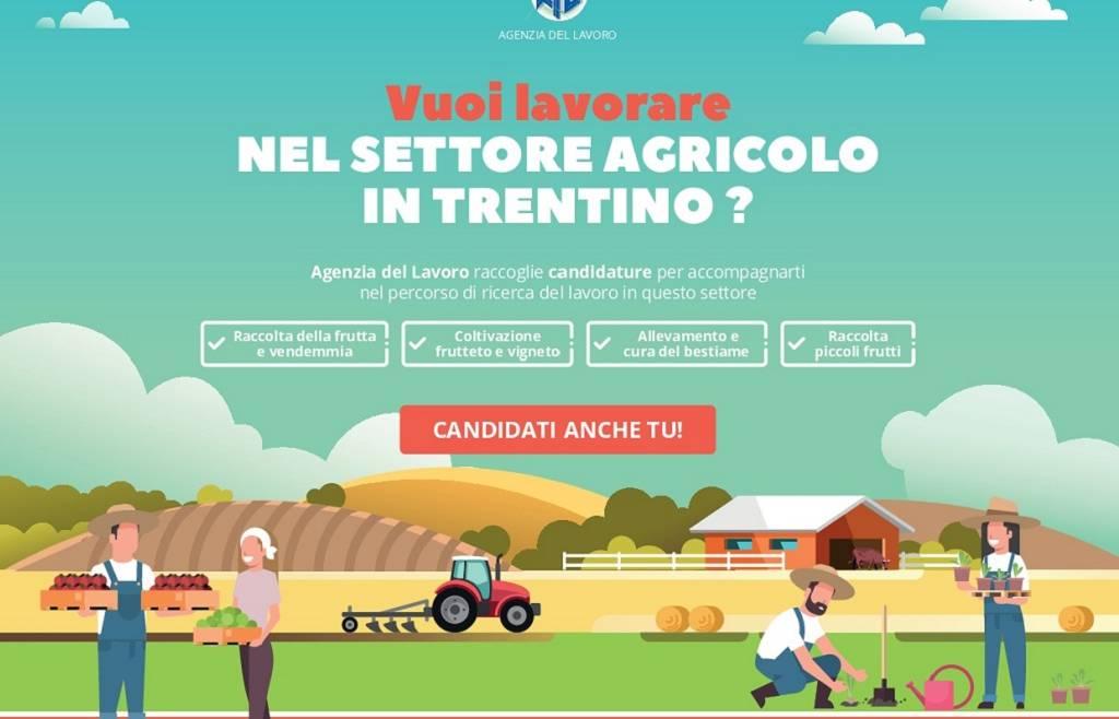 Lavorare nel settore agricolo