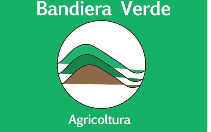 """Come ottenere la """"Bandiera Verde"""""""