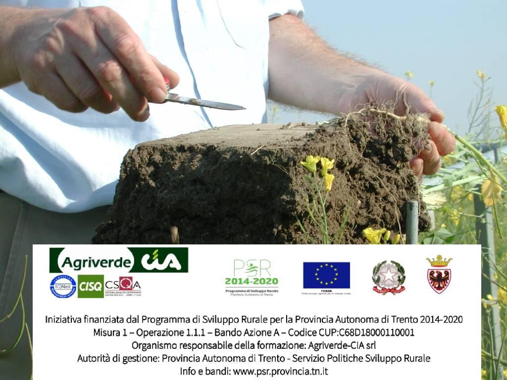 "Workshop ""Fertilità del terreno – Romagnano"""