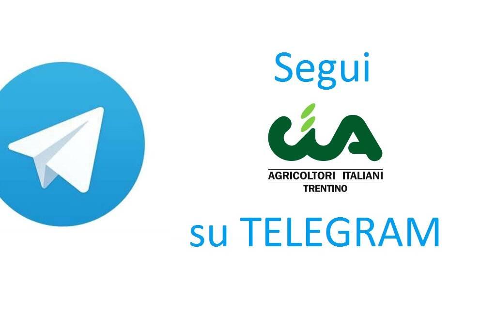 Telegram: un nuovo servizio di CIA Trentino