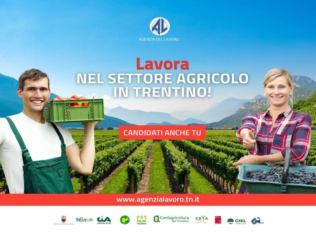 Lavora nel settore agricolo