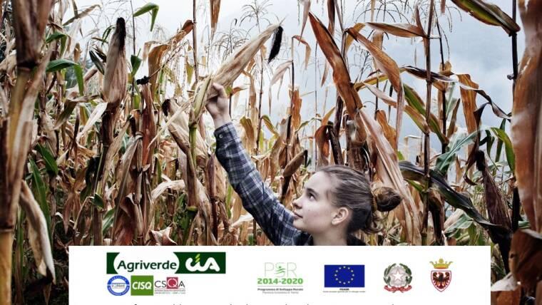 WORKSHOP IL RICAMBIO GENERAZIONALE IN AGRICOLTURA