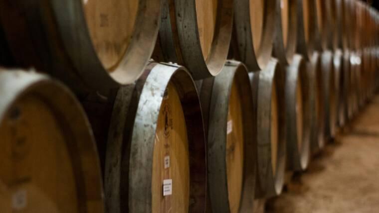 Bando L.P. 4/2003 art 46 contributi per l'acquisto di barriques per le imprese vitivinicole